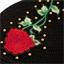 Bonnet motif roses